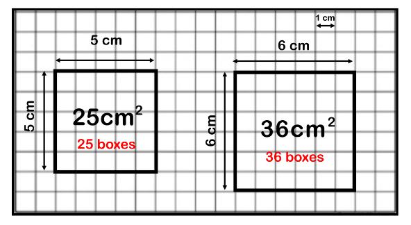 area units