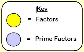 Prime Factors 1