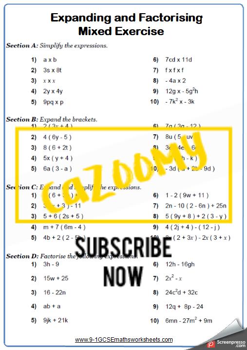 Algebra Worksheet 5