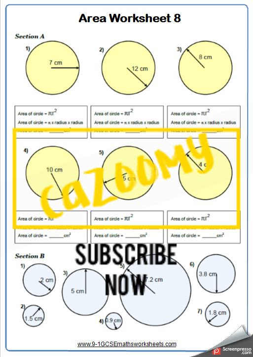 Area of Circles Worksheet 1