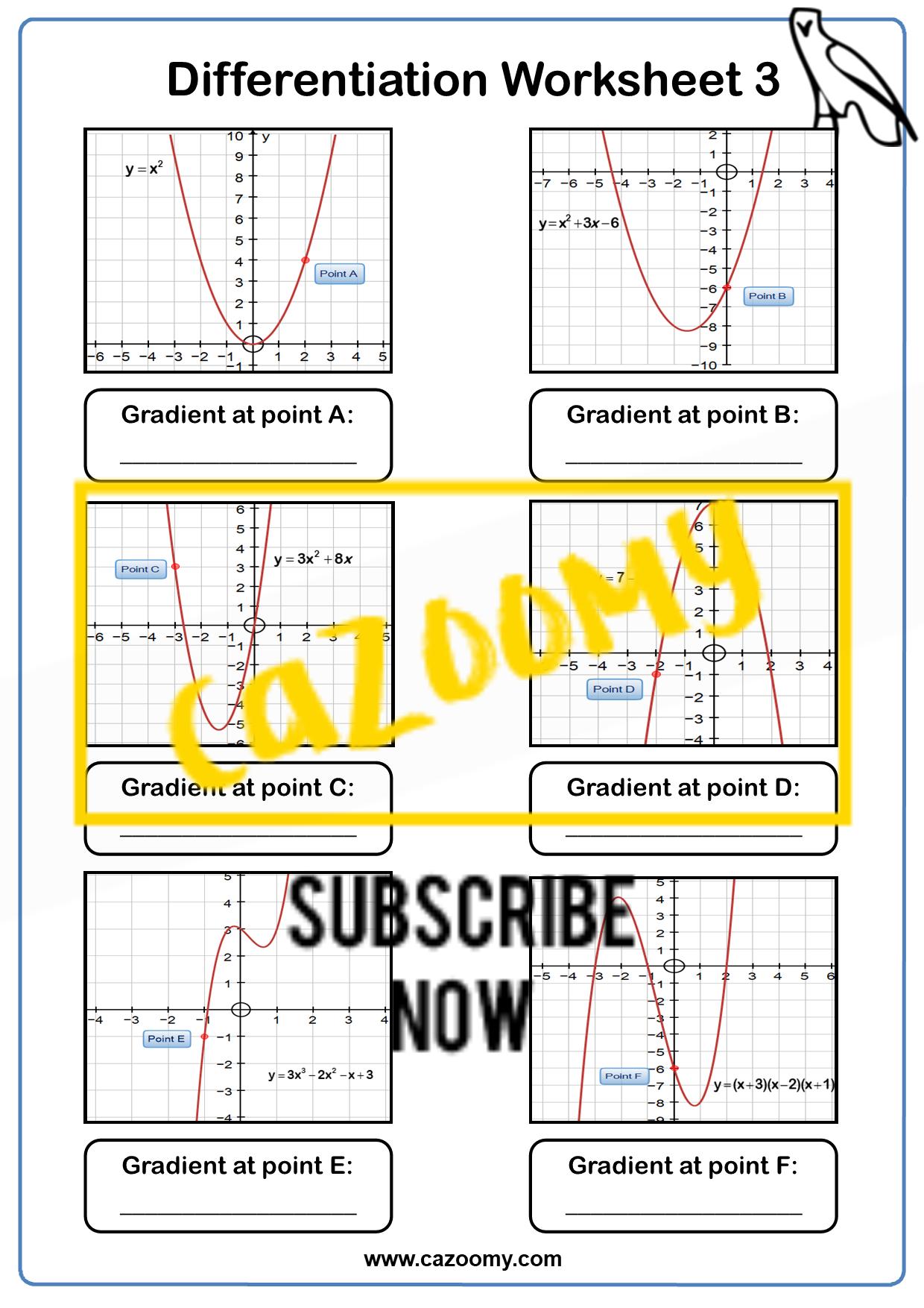 Differentiation Worksheet 3