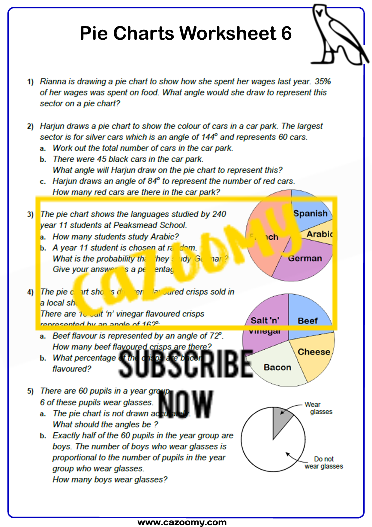 Pie Charts Worksheet 6