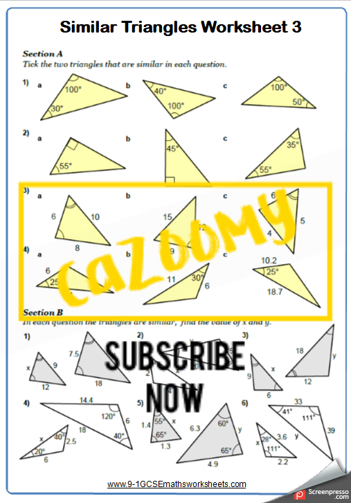 Similar Shapes Worksheet 3