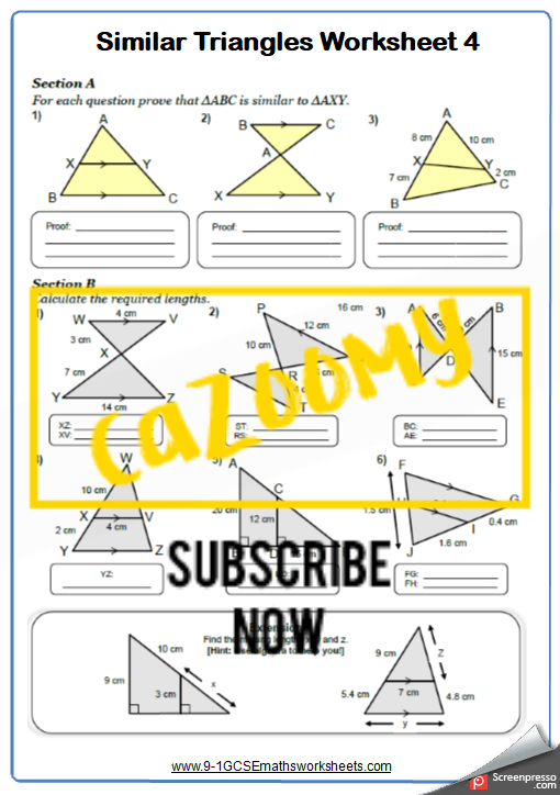 Similar Shapes Worksheet 4