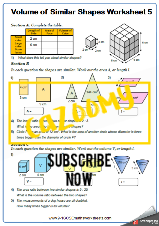 Similar Shapes Worksheet 5