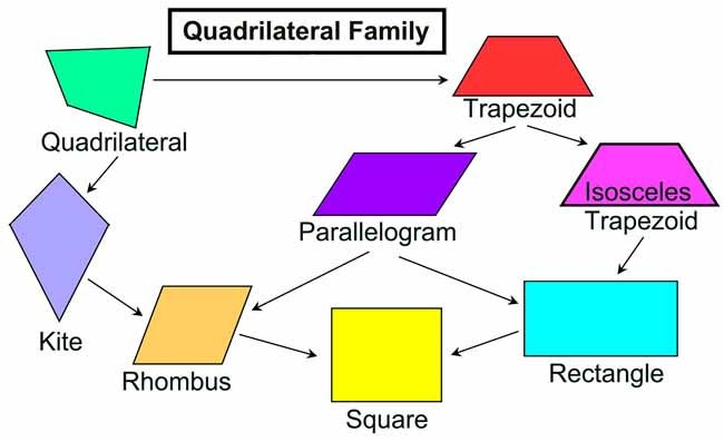 what-is-a-quadrilateral-worksheets