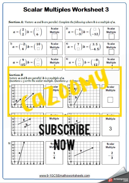 Vectors Worksheet 3
