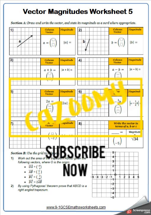 Vectors Worksheet 5